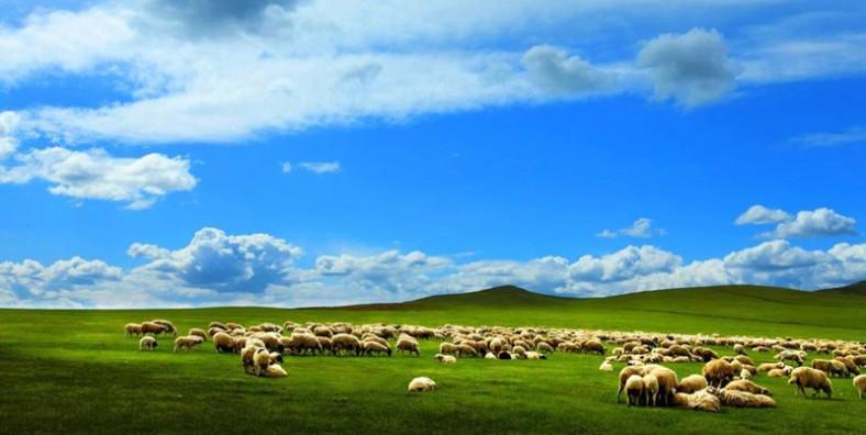 8 Days Beijing & Inner Mongolia Adventure Tour