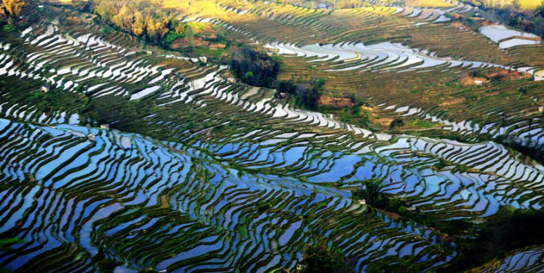3 Days Yuanyang Rice Terraces Tour from Kunming