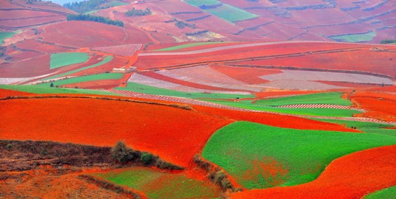 1 Day Kunming Dongchuan Red Land Tour from Kunming