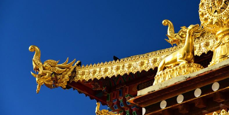 1 Day Shangrila Tibetan Culture Tour with Napahai Lake, Tibetan Villages and Songzanlin Monastery