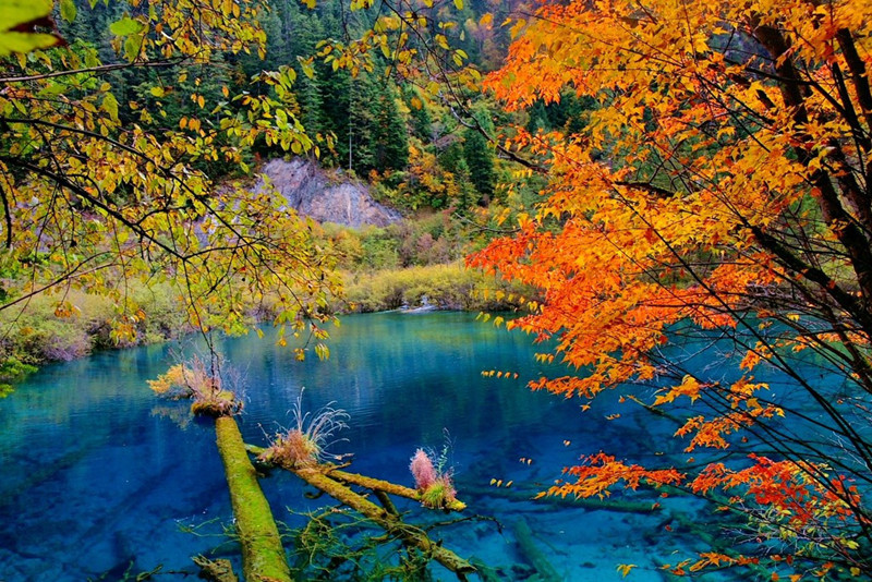 Jiuzhai Valley National Park (Jiuzhaigou) in Sichuan