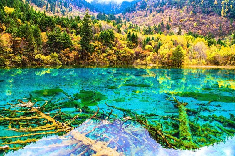 9 Days Sichuan World Heritages Tour
