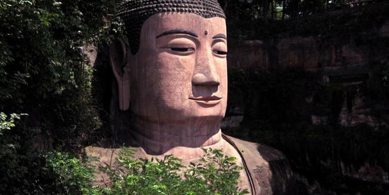 1 Day Chengdu Panda and Leshan Giant Buddha Group Tour