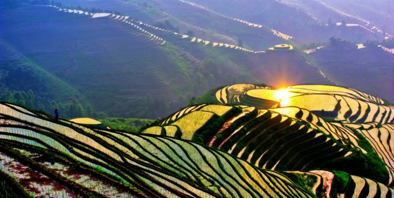 13 Days China-Vietnam Rice Terraces and Ethnic Culture Tour