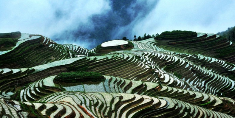 1 Day Guilin Longji Rice Terraces Group Tour