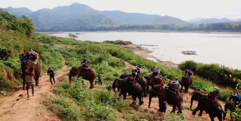 1 Day Mekong River Cruise Tour from Guanlei Port to Chiang Saen