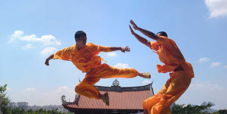1 Day Shaolin Temple Kungfu Tour from Luoyang