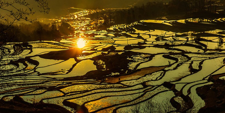 4 Days Long Street Banquet Festival and Yuanyang Rice Terraces Photography Tour