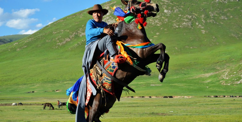 15 Days Qinghai-Sichuan Overland Tour and Yushu Horse Racing Festival from Xining to Chengdu