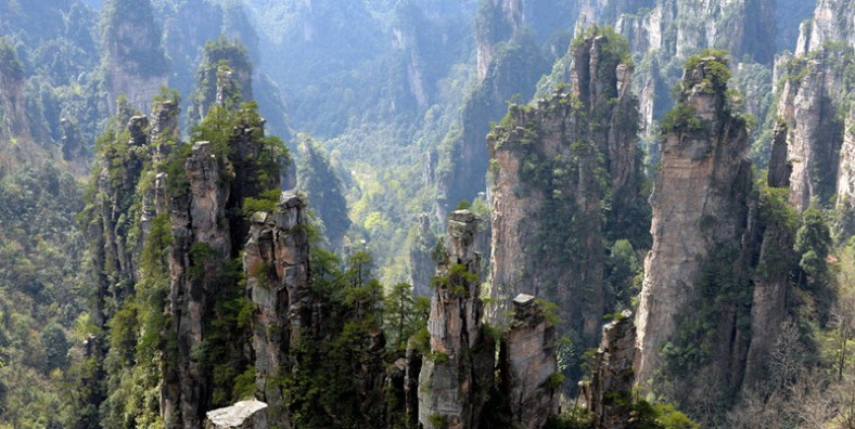1 Day Zhangjiajie National Park Tour