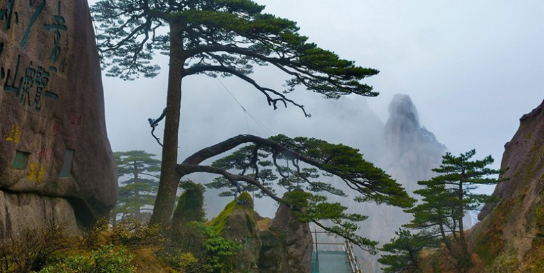 4 Days Huangshan Photography Tour (One Night On The Top of Yellow Mountain)