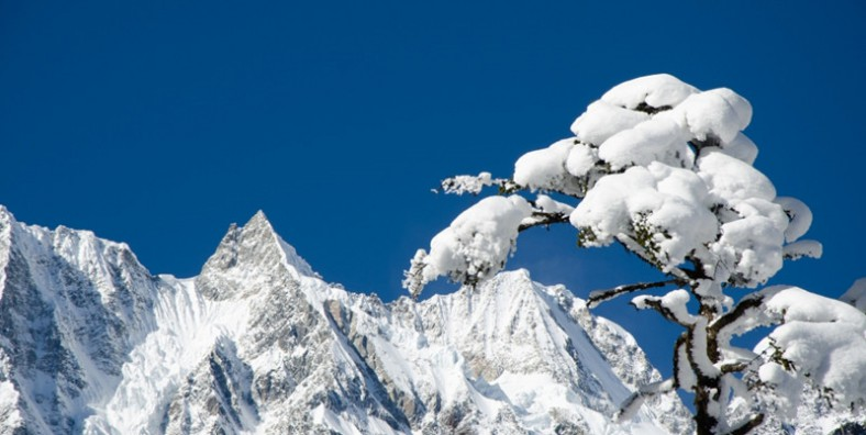 3 Days Hailuogou Glacier Park Tour from Chengdu