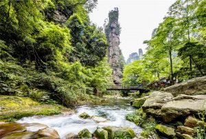 Golden Whip Stream in Zhangjiajie