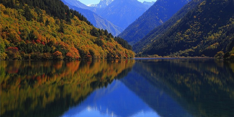 22 Days Sichuan Birding Tour with Mount Emei and Jiuzhaigou