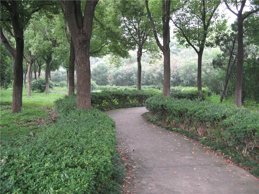 Hanghua Park in Shanghai